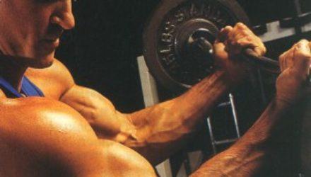 Как правильно накачать мышцы и ложные истины
