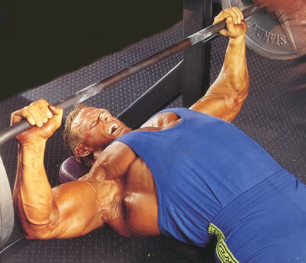 грудные мышцы и тренинг