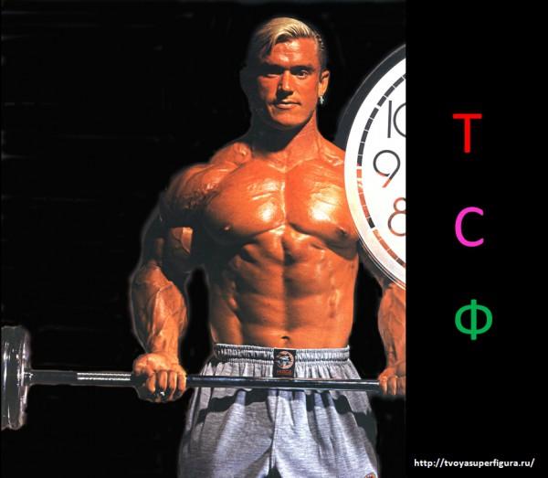 как накачать мышцы советует Дэн Уэгман