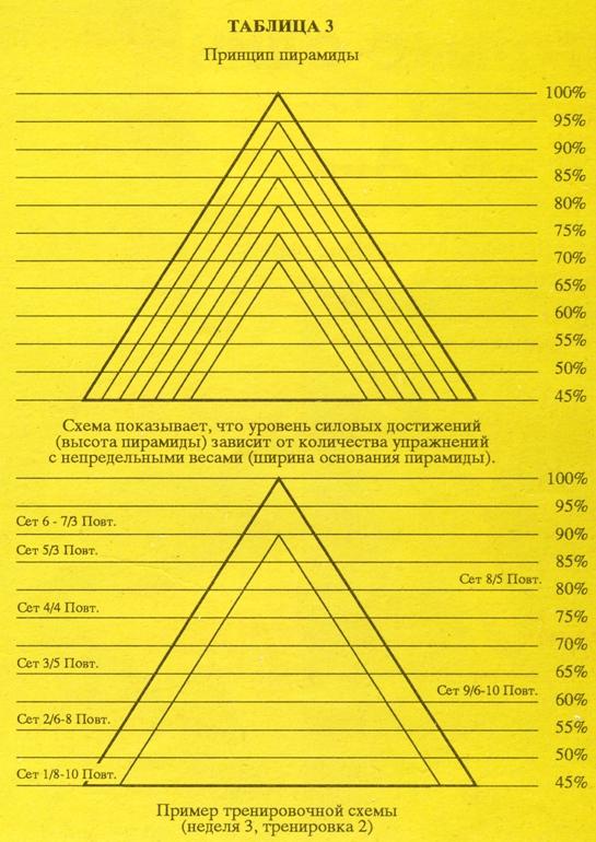 развитие силы таблица пирамиды