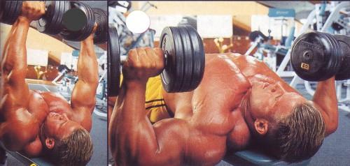упражнения для груди жим гантелей