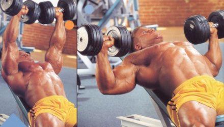 Упражнения для груди Жим гантелей на наклонной скамье