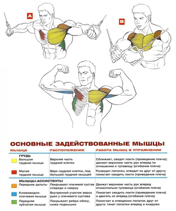 кроссоверы на верхнем блоке упражнения для груди