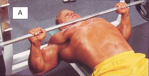 упражнения для груди жим лежа нижня точка
