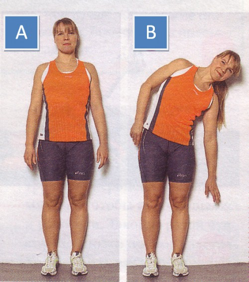 упражнения для пресса наклоны с опорой о стену