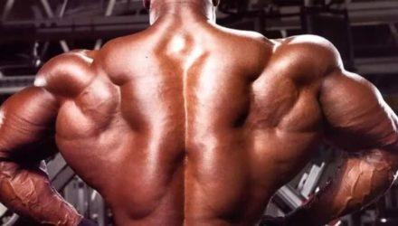 Лучшие упражнения для спины или как накачать спину в зале и дома