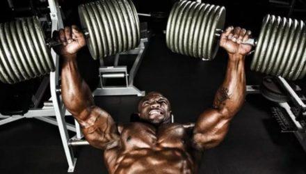 Зачем нужная разминка перед тренировкой с «железом»?